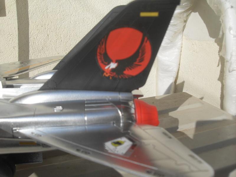 Skystriker Sky Patrol version by David Sdc11022