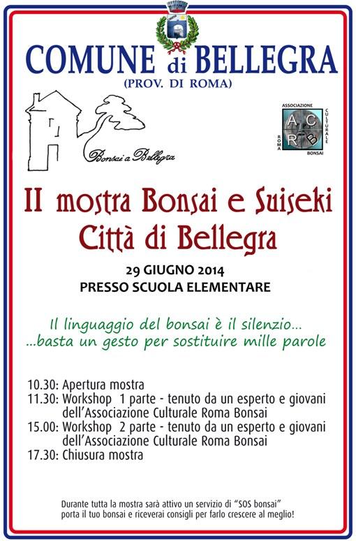 Forum Bonsai Romano - Benvenuti Manife10