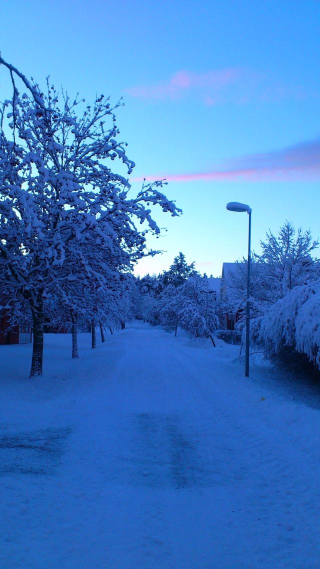 Umeå - Page 2 Dsc_0423