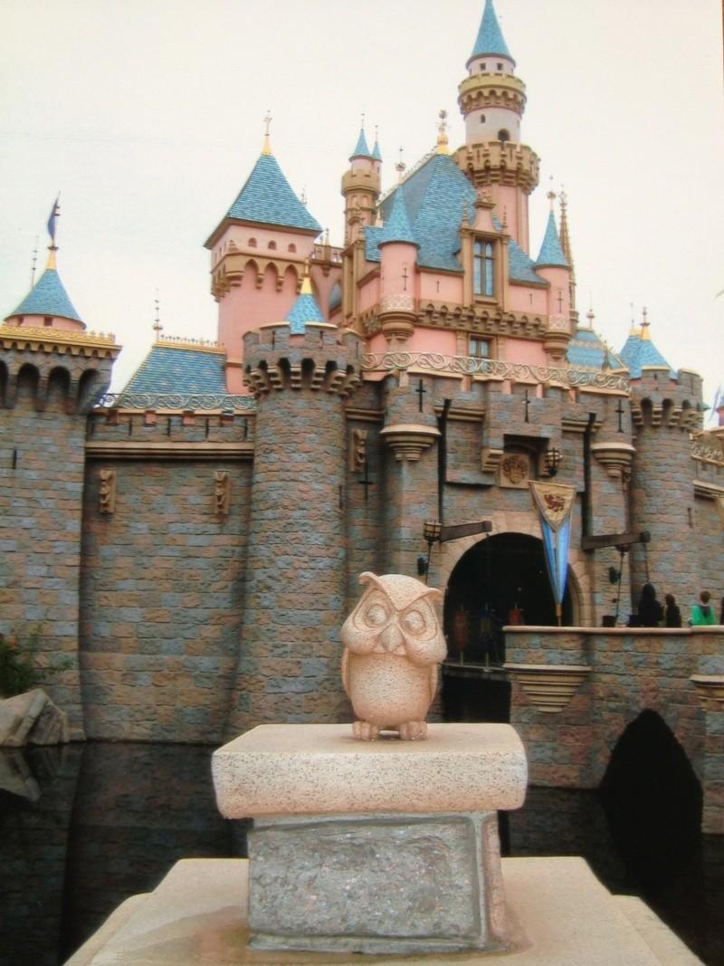 Vos plus belles photos de Disneyland Resort Img_0510
