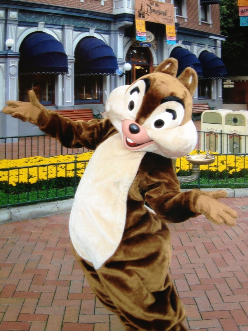 Vos plus belles photos de Disneyland Resort Img_0511