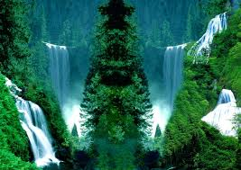 Doğa Resimleri-1 1210