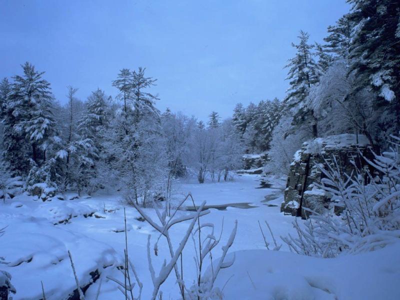 Doğa Resimleri-1 910