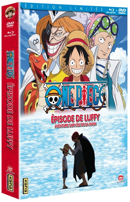 ONE PIECE (ANIME : ATTENTION SPOIL) - Page 2 Combo10