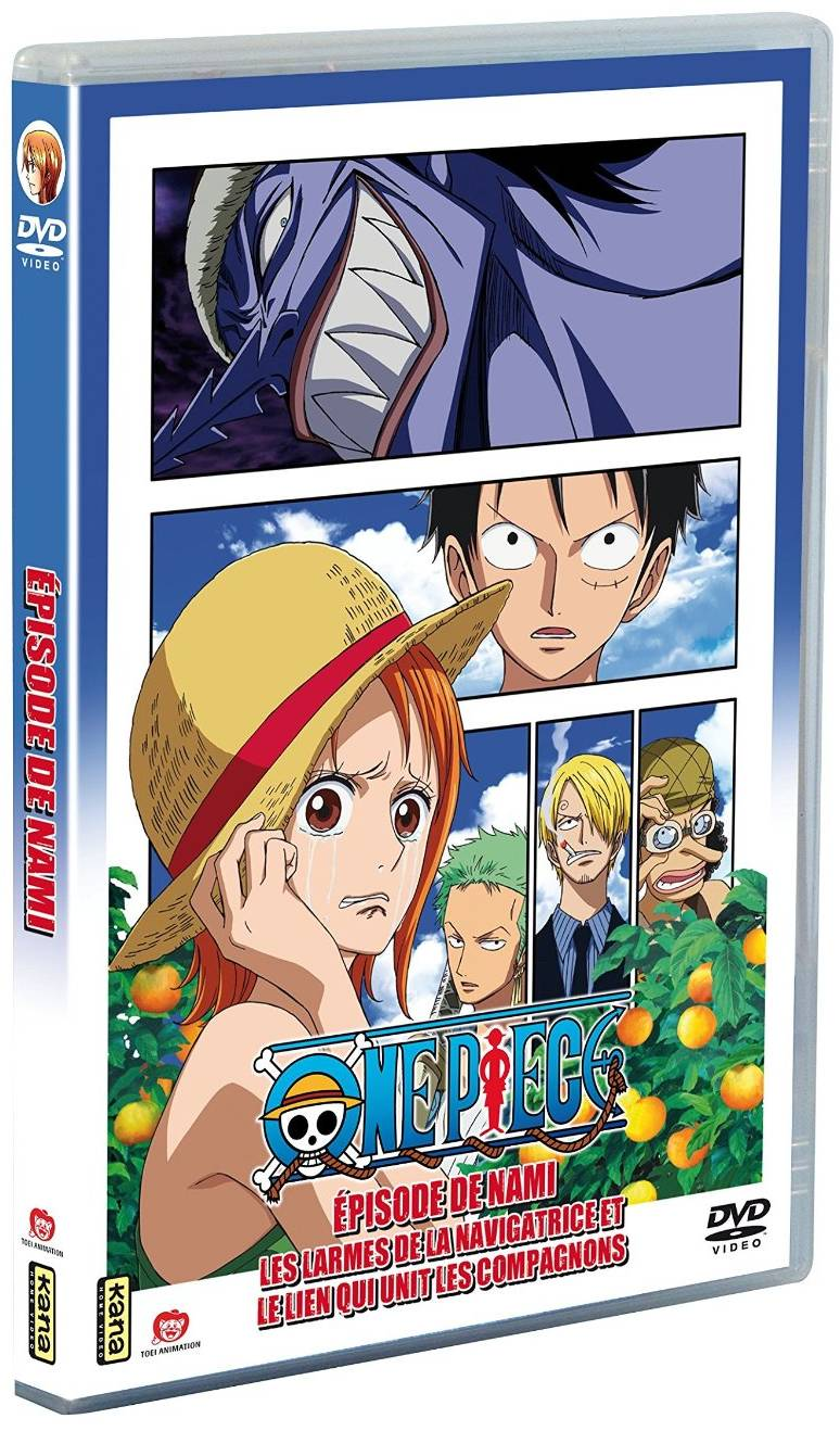 ONE PIECE (ANIME : ATTENTION SPOIL) - Page 2 Dvd11