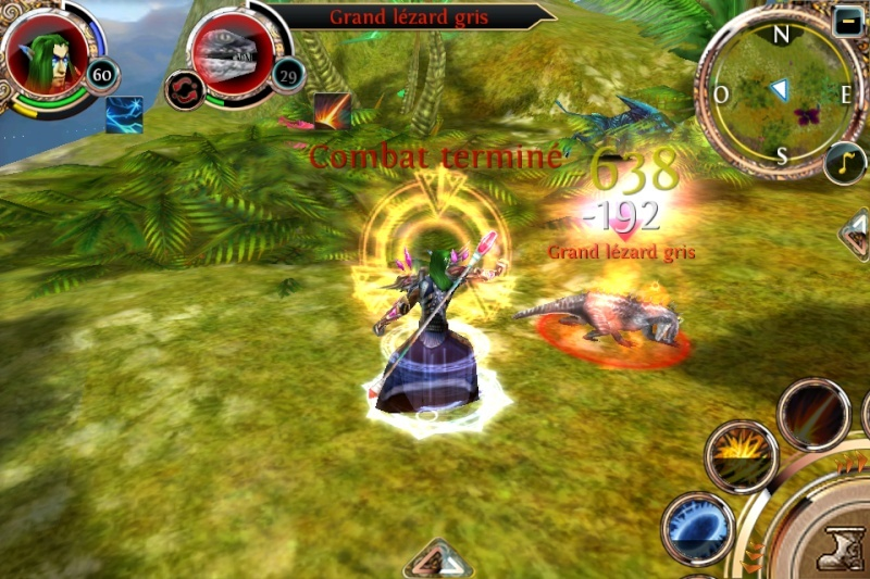 Order and Chaos (Iphone, Ipad, Mac) [Gameloft] Img_0217