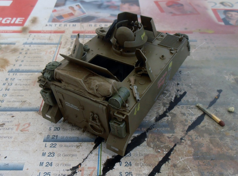 M113 ACAV ( tamiya 1/35eme ) - Page 2 P7310314