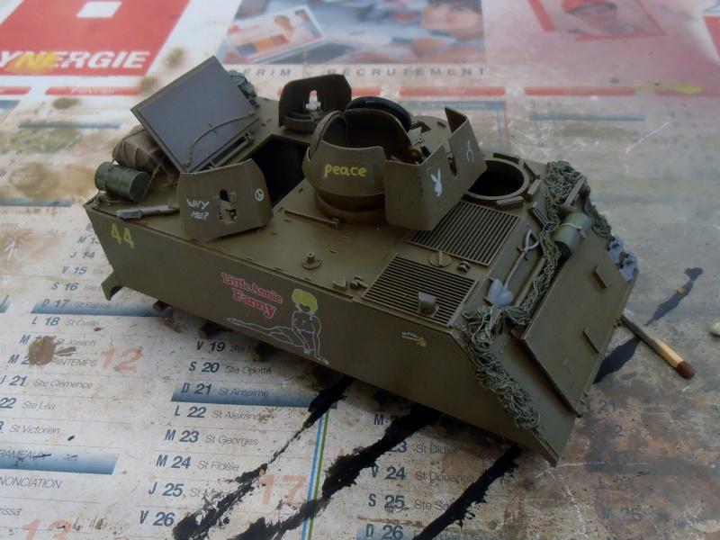 M113 ACAV ( tamiya 1/35eme ) - Page 2 P7310315
