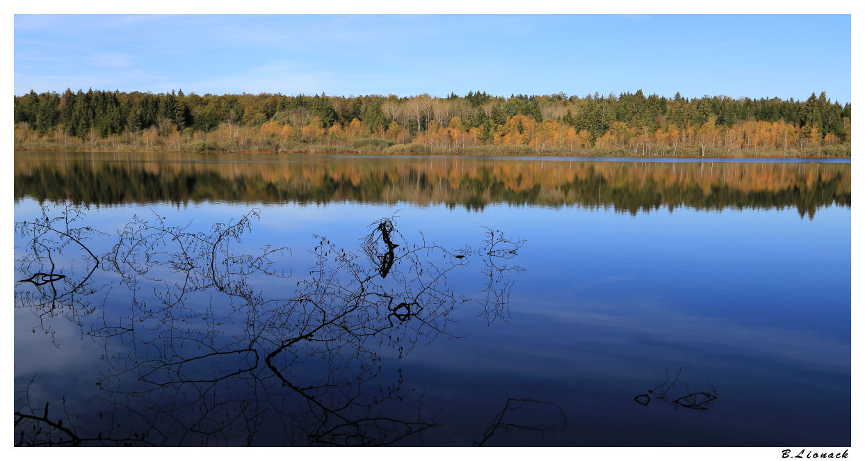 Lac de Bonlieu Bonlie11