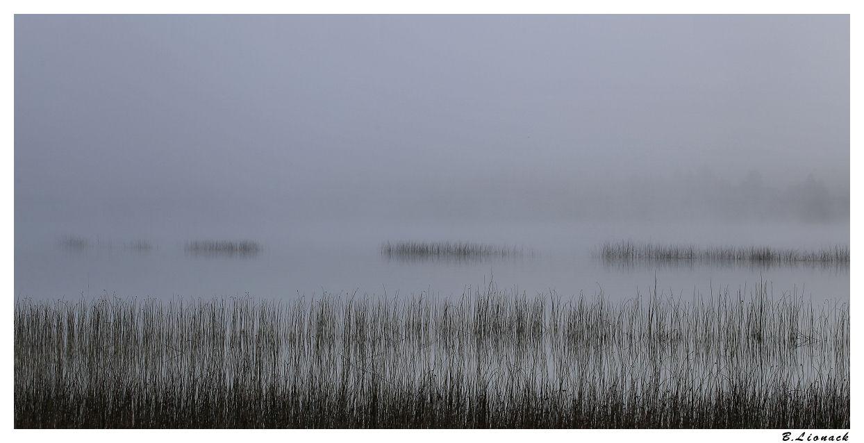 Brume sur le lac +1 Brume10
