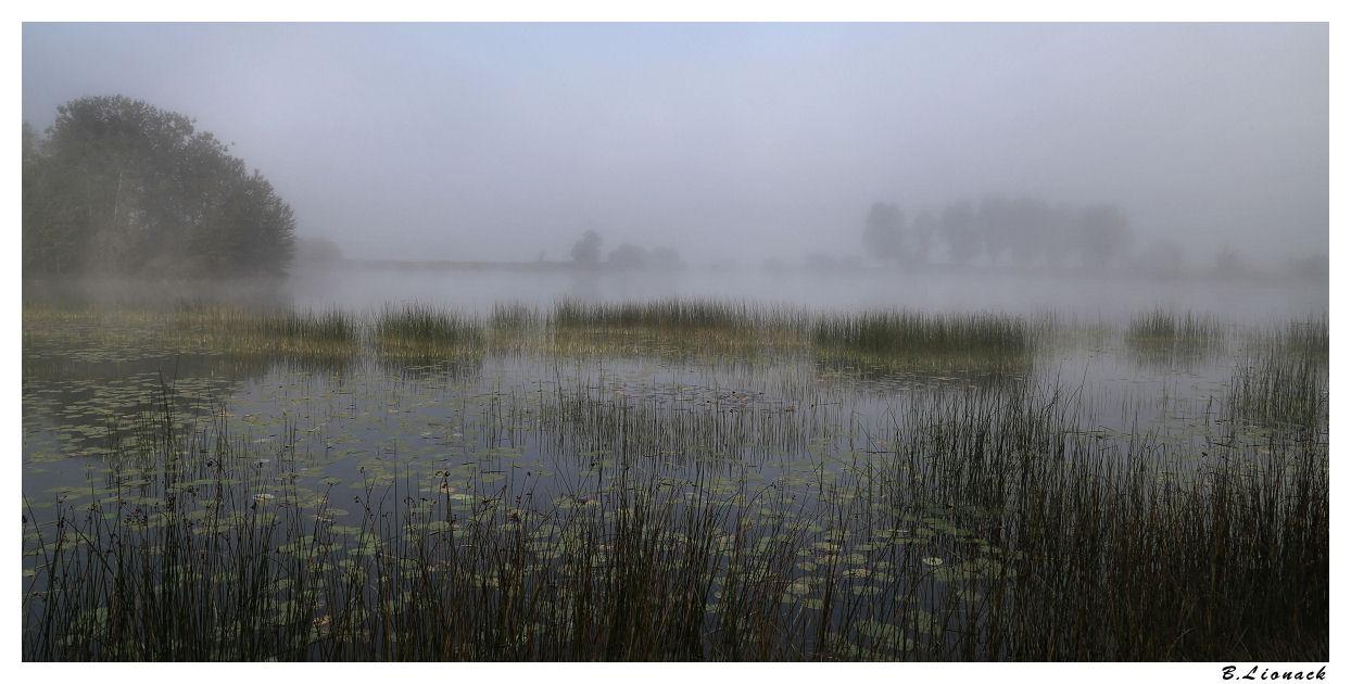 Brume sur le lac +1 Brume11