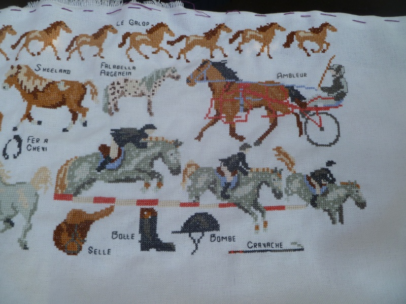 chevaux ... - Page 3 P1040715