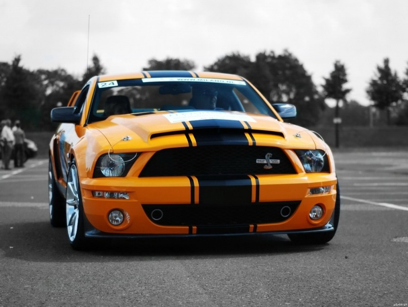 Revell Shelby GT 500 Ford-m11