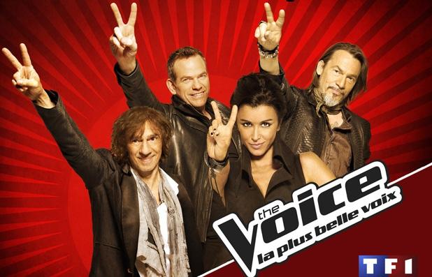 Candidature de vaylis. Voice-10