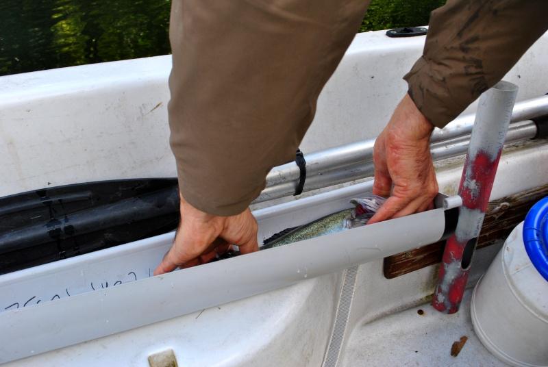 Open float tube de Saint Médard de Guizières 2014 - Page 3 Dsc_0620