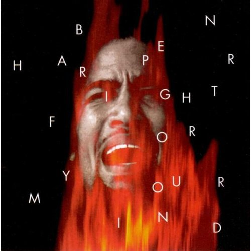 Senti come se sente 'sto disco... Aoo! #1 Fight for Your Mind di Ben Harper Ben-ha11