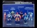 Cosmocats / Thundercats (LJN / ALES) 1985-1987 Ljn-ca11