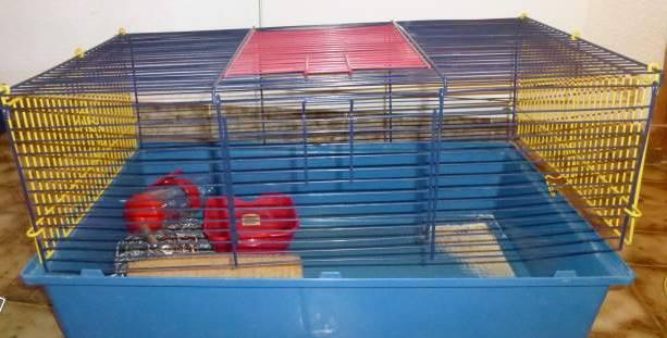 Furet plus+ petites cages( région parisienne )  10524710