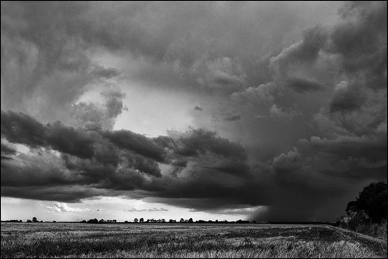 L'orage monte Img_5011