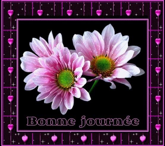 Bon Jeudi Ad1e3610