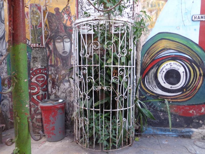 La Havane   (Cuba) Dsc01311