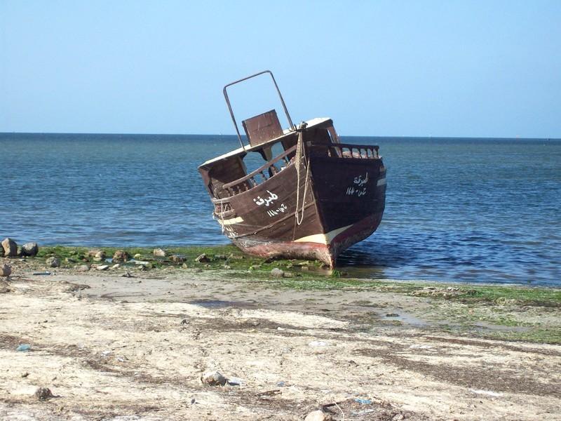 La Tunisie pays démocratique... Joudhu21