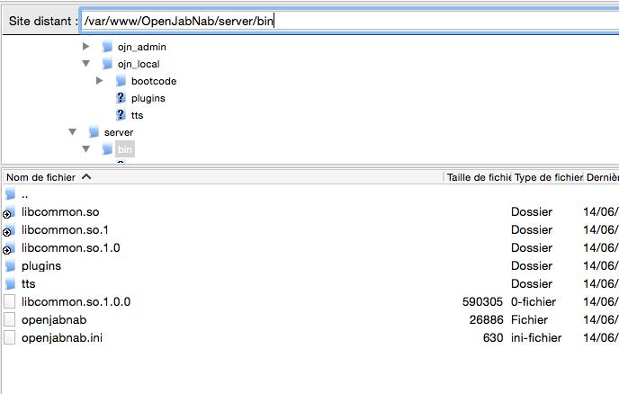 OJN sur Raspberry Pi - Page 3 Captur14