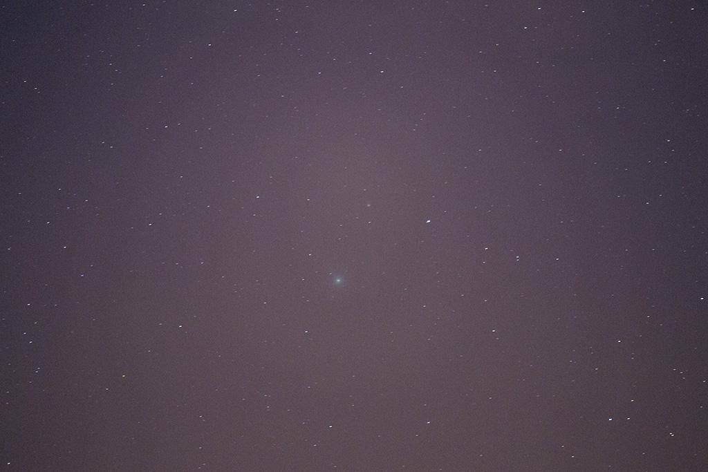 Comète Lovejoy sur trépied Img_4911