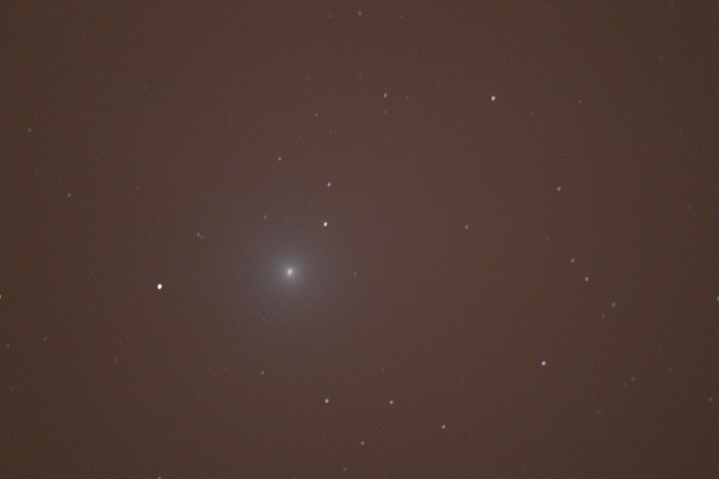 Comète Lovejoy sur trépied Img_4912