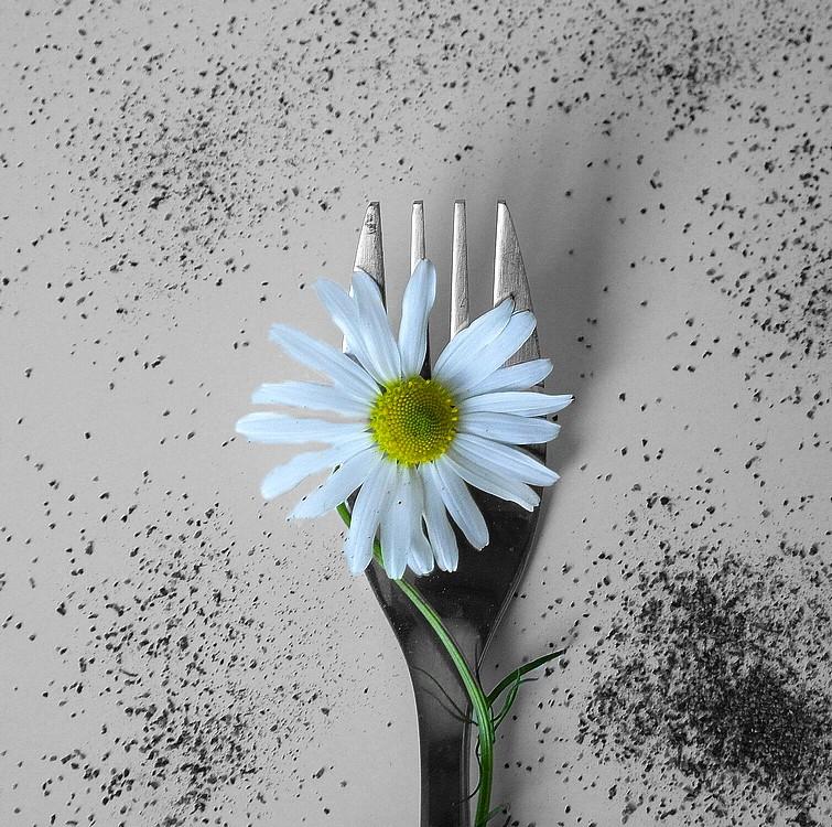 Une fleurchette Fleurc11