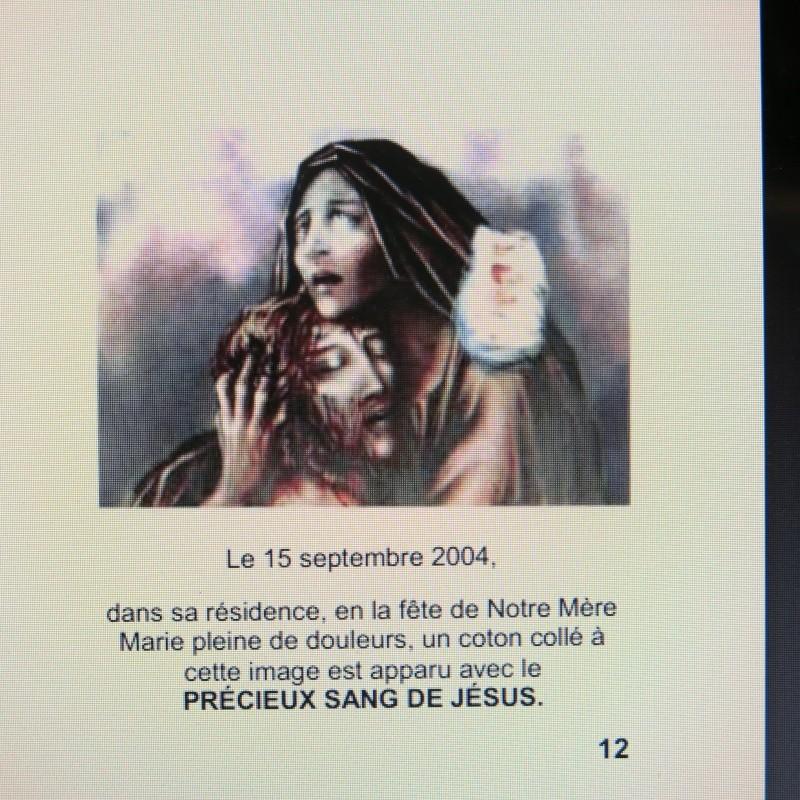 Comment sauver notre Âme - Une Requête de la Vierge Marie à Dory Tan ! - Page 2 Commen24