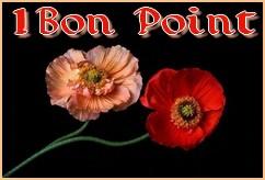 LES VOTES POUR LE FORUM - Page 6 Bp2fle10