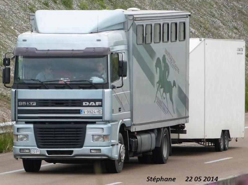 Transports de chevaux - Page 4 P1230833