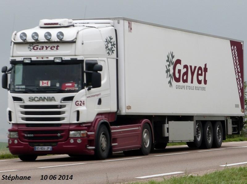Gayet (La Fléche, 72) P1240833