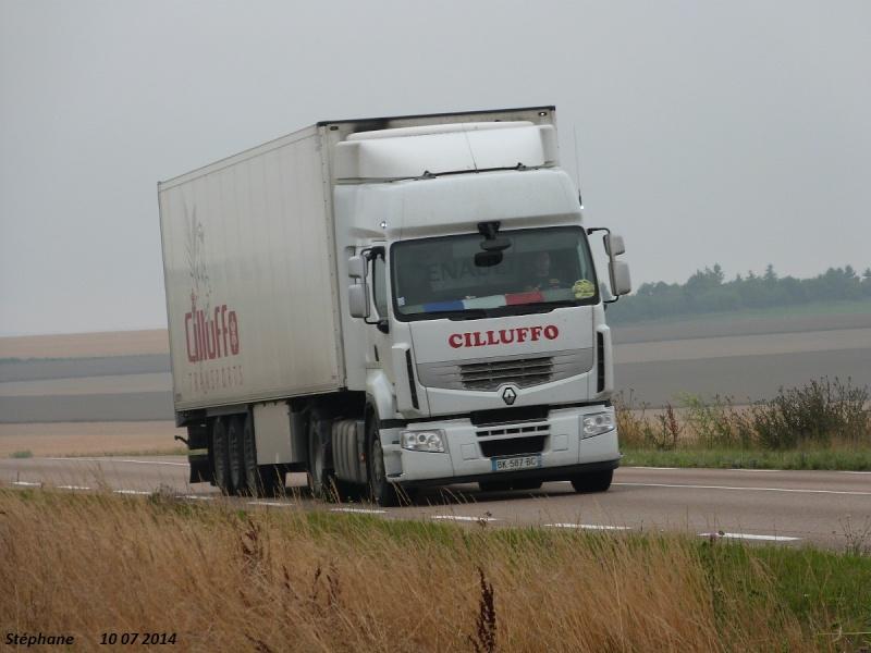 Cilluffo (Marolles, 51) P1240865