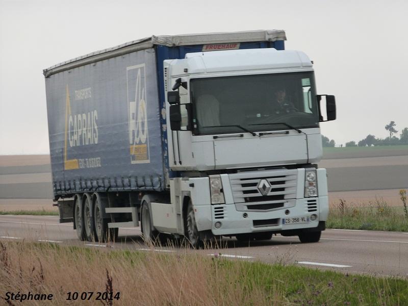 Caprais (Reims) (51) (groupe Delisle) P1240963