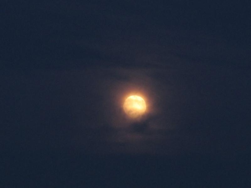 La plus belle pleine Lune de l'année ! Pleine10