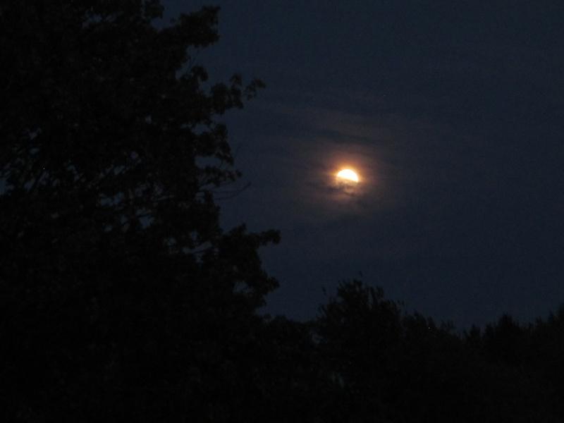 La plus belle pleine Lune de l'année ! Pleine11