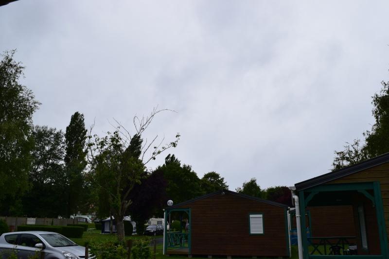 quelques jours à LE TREPORT (normandie) Dsc_0029