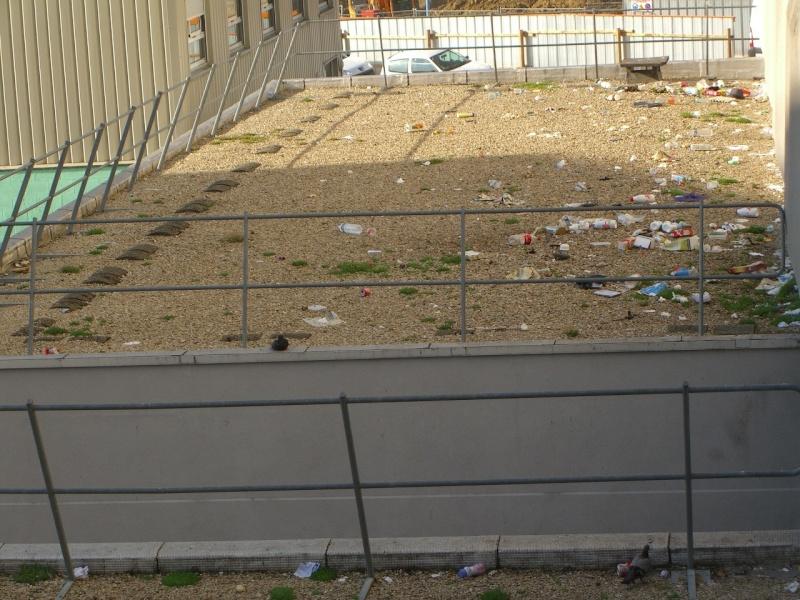 Problèmes insalubrité / stationnement / sécurité rue de Meudon - Page 2 Cimg5910