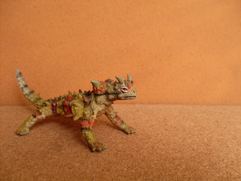 Other thorny devil Thorny12