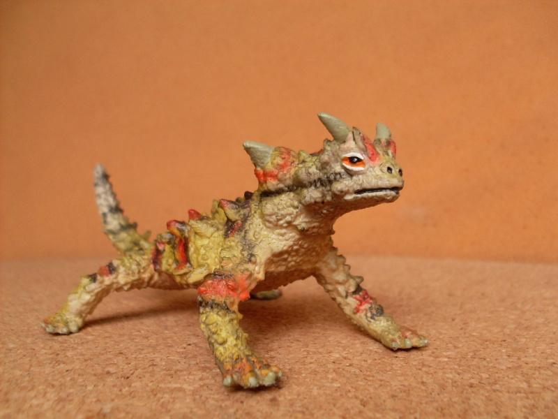 Other thorny devil Thorny14