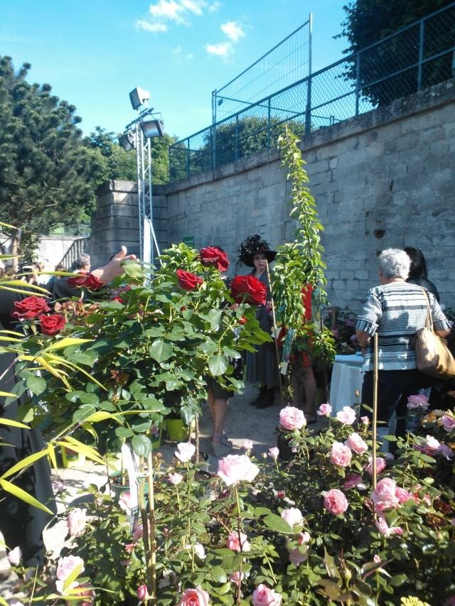 ART DU JARDIN jardins d'exception, fleurs d'exception - Page 2 1_1_1_31