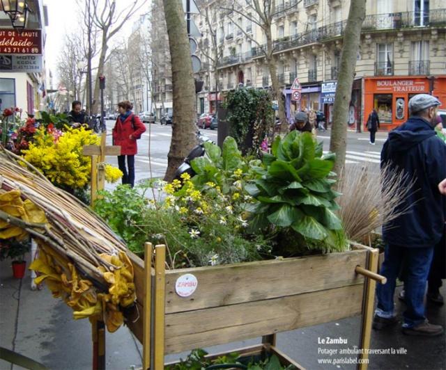 ART DU JARDIN jardins d'exception, fleurs d'exception - Page 2 1_1_1_39
