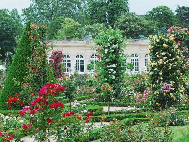 ART DU JARDIN jardins d'exception, fleurs d'exception - Page 2 1_1_1_77