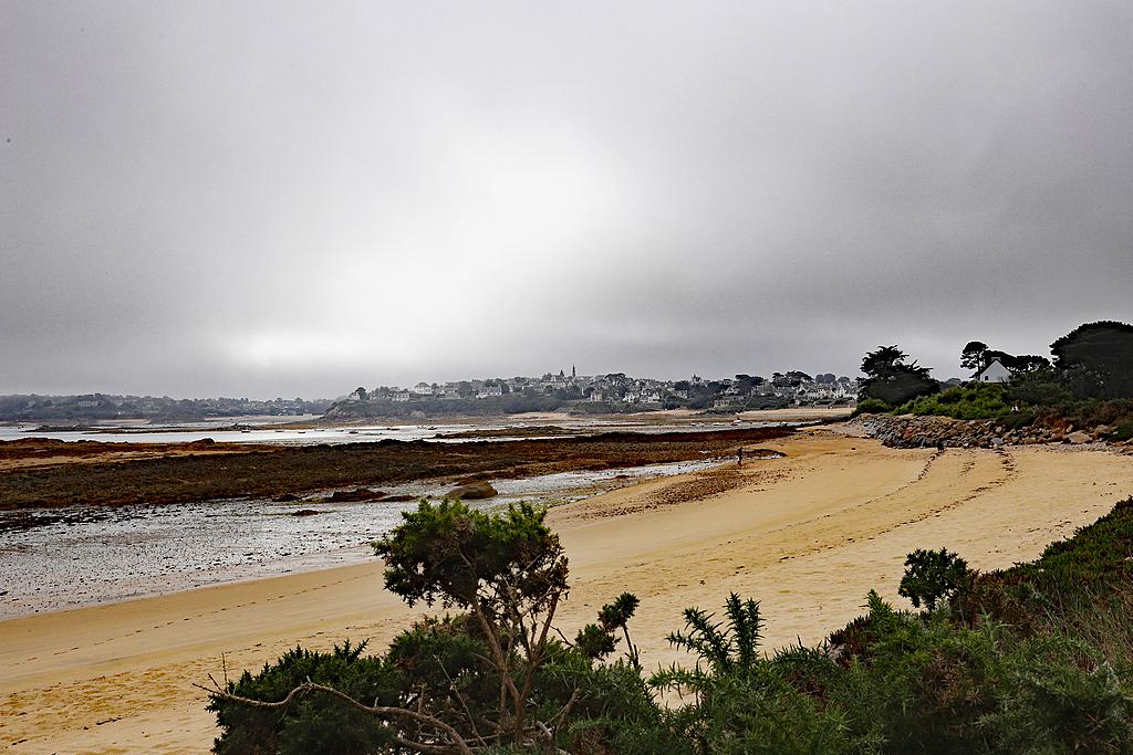 Ile Callot en Finistère 6d2_7924