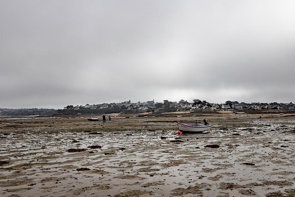 Ile Callot en Finistère 6d2_7926