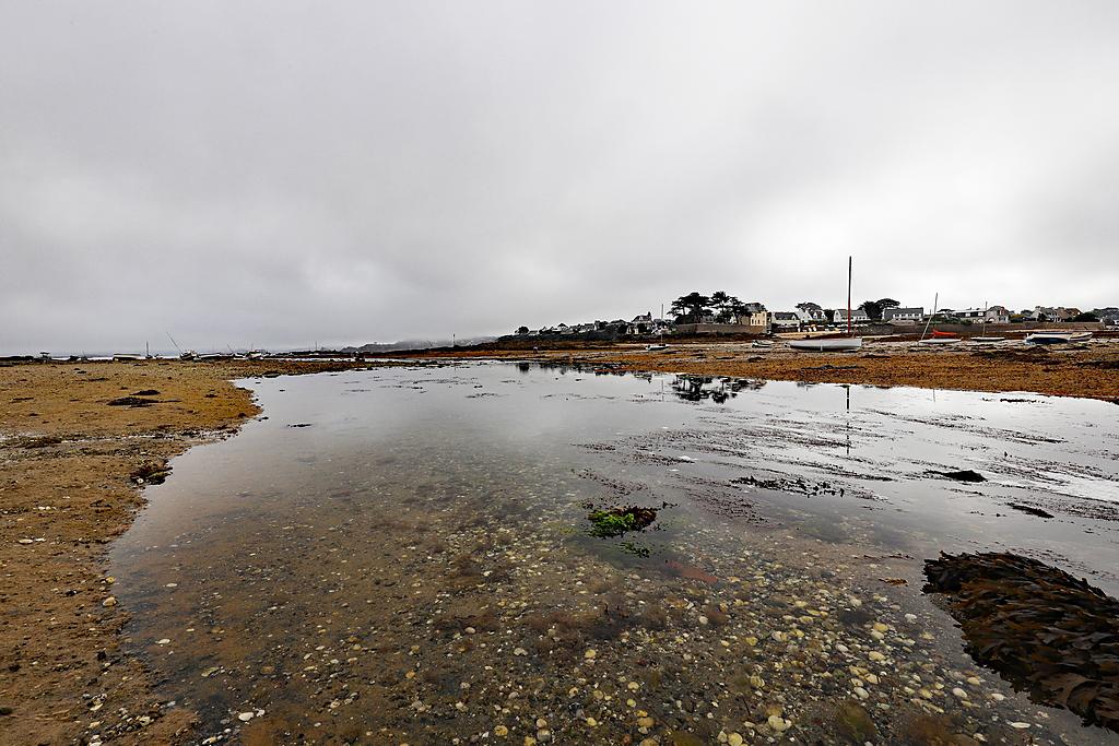 Ile Callot en Finistère 6d2_7928