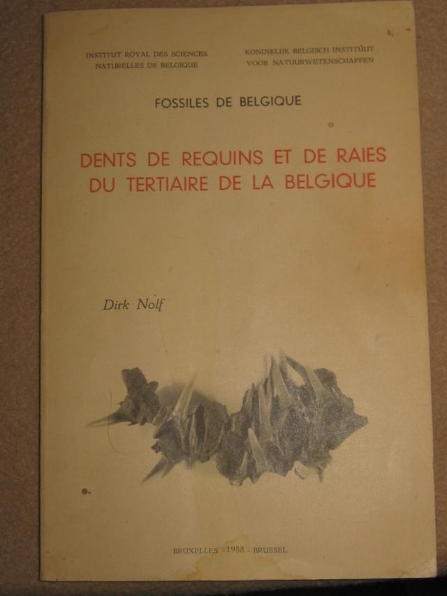 dent de squale Miocène - Page 2 Img_0313