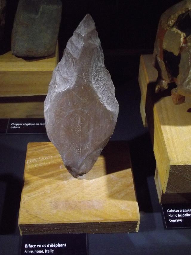 Retour des fètes  de la préhistoire a Tautavel .. Imgp1713